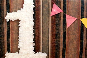 Cover Picture for DIY project on First Birthday Number Photo Prop